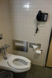 Not sure why there's a phone next to the toilet...