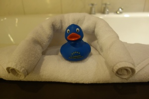 Hello, Mr. Blue Ducky