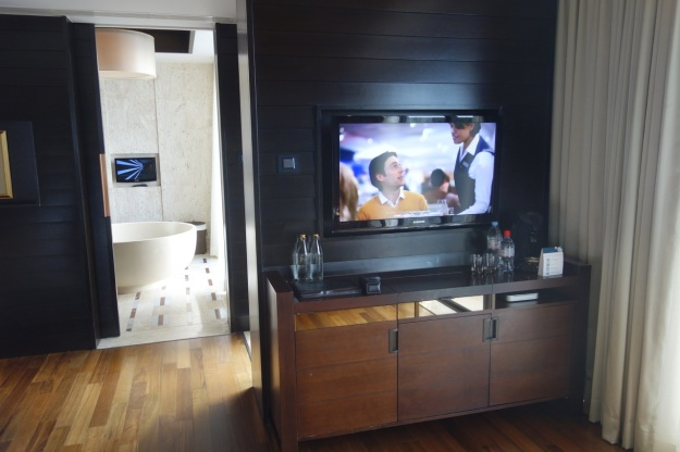 TV and view into bathroom