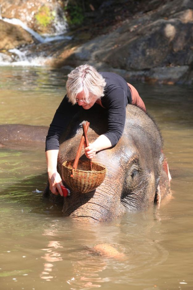 Scrubbing your elephant