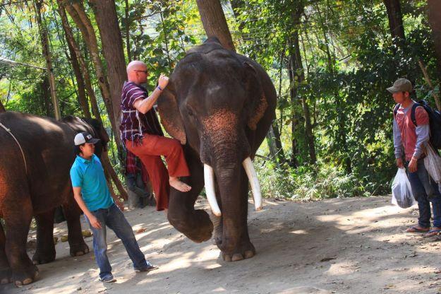 Mounting your elephant