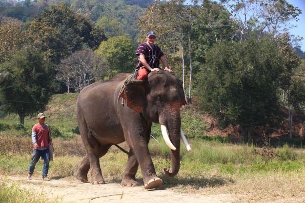 Riding your elephant